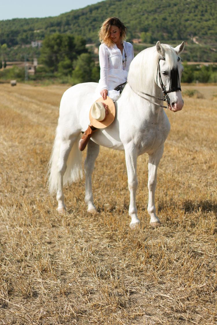 Blogtiful_caballo_bdba_6