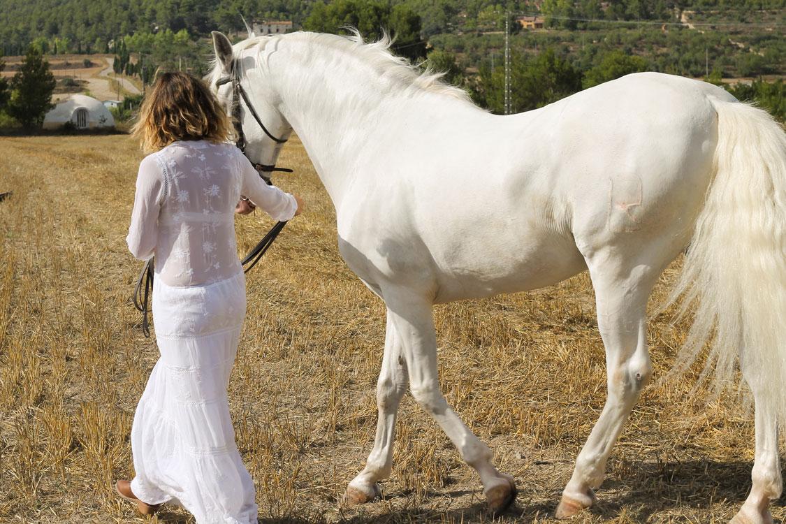 Blogtiful_caballo_bronco_6